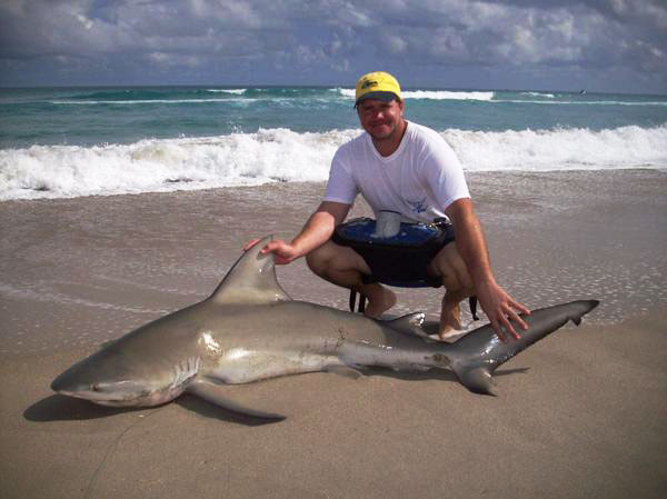 Blacktip challenge shark fishing tournament image for Shark fishing in florida