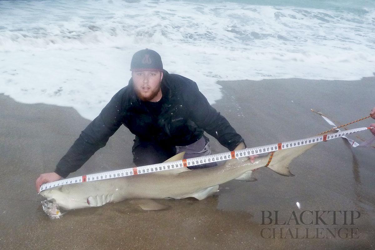 Blacktip challenge shark fishing tournament image for Shark fishing gear